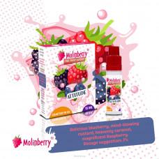 Molinberry M-Line Attitude Flavour Concentrate