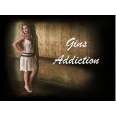 Gins Addiction 120ml DIY E Liquid Kit - Halcyon Haze
