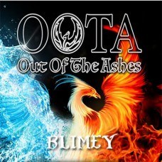 Blimey Flavour Concentrate by OOTA