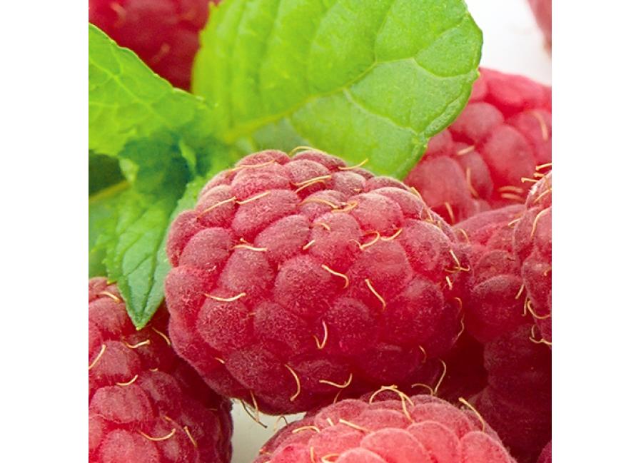 Sweet Berry Ice DIY E Liquid Recipe