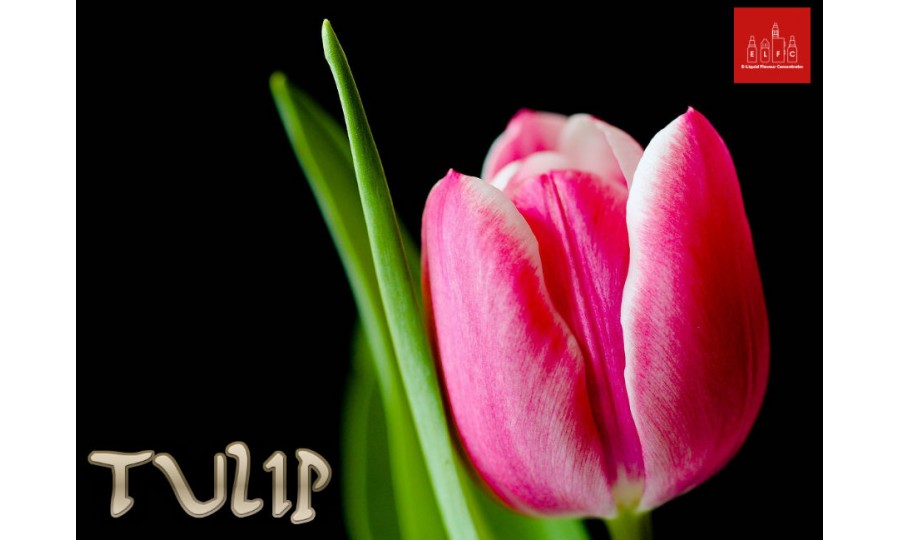 Tulip DIY E Liquid Recipe