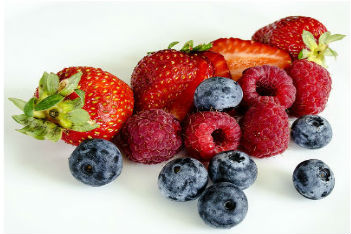 Berry Fruits (113)