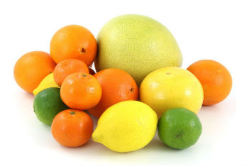 Citrus Fruit (51)